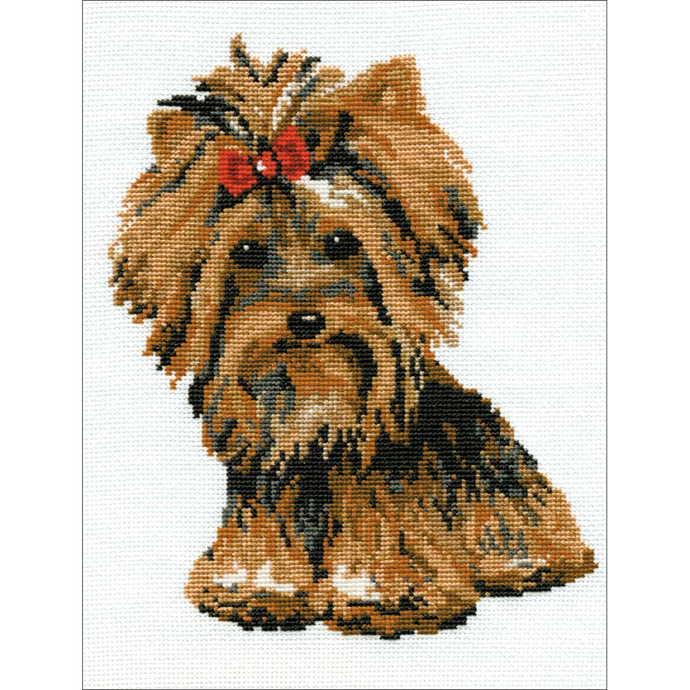 Yorkshire Terrier (15 Count)
