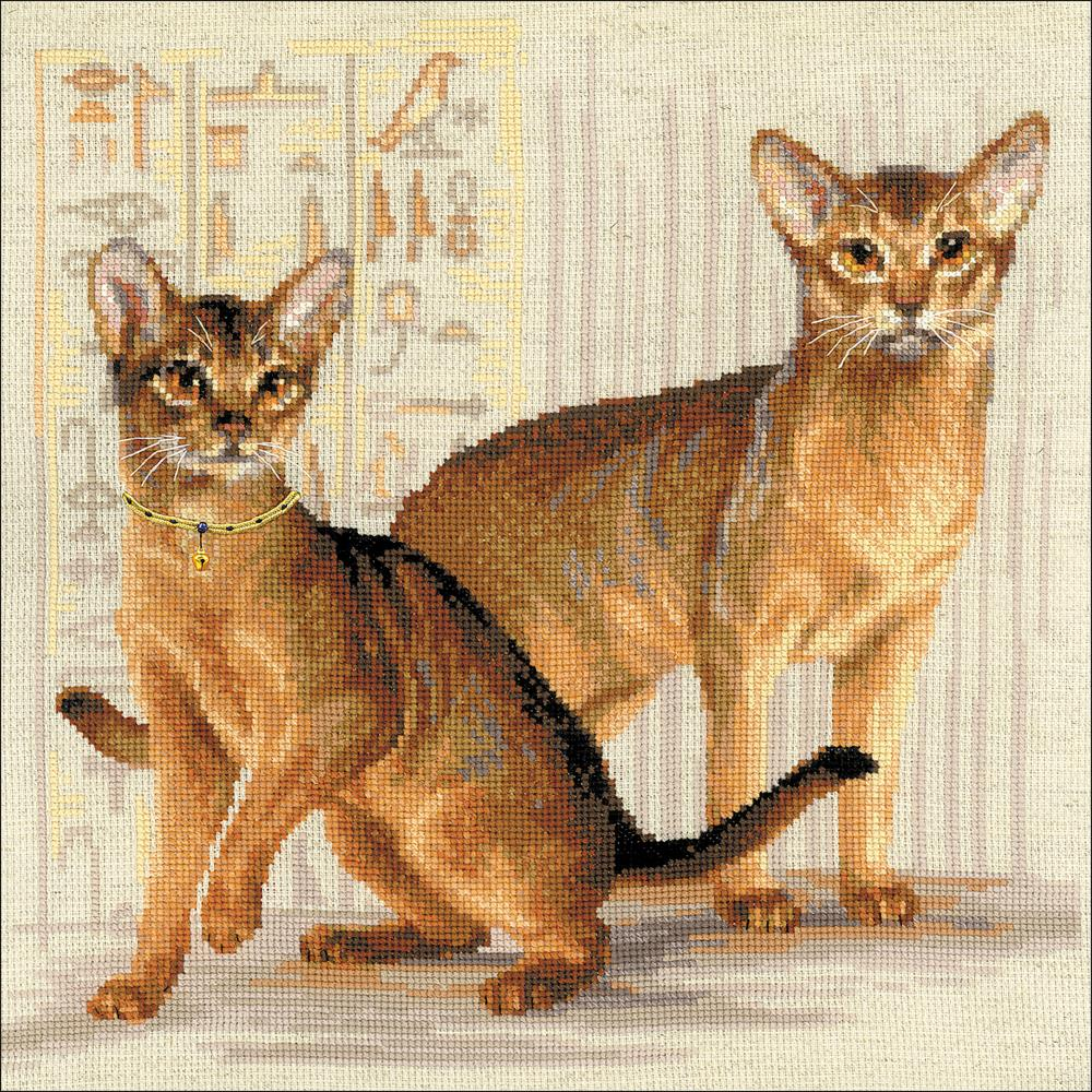 Abyssinian Cats (10 Count)
