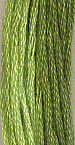 Spring Grass 10 Yards
