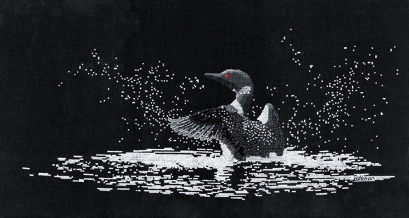 Northern Lights (Common Loon)