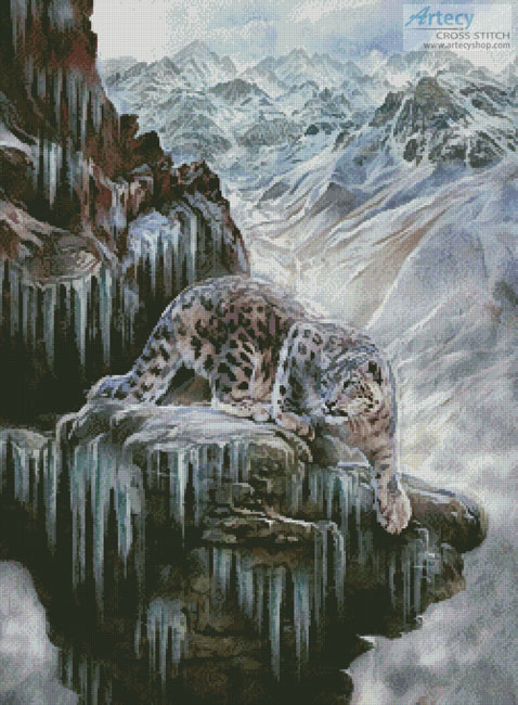 Snow Leopard High Country