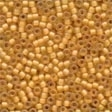 62044 Autumn Frosted Seed Beads