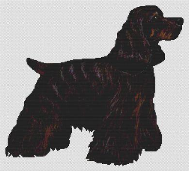 Black and Tan Cocker Spaniel