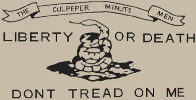 Culpeper Flag - Click Image to Close