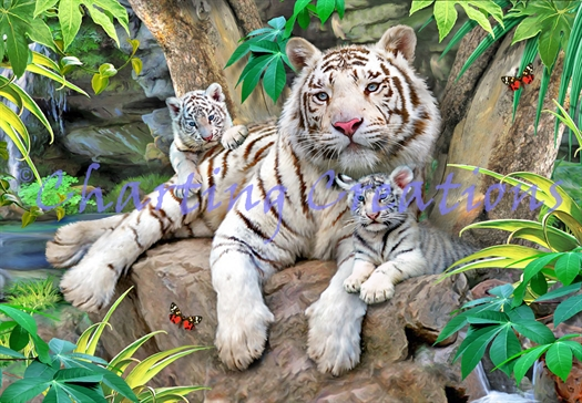 White Tigers Of Bengal