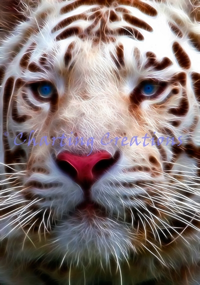 Fractal White Tiger - Click Image to Close