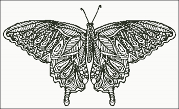 Zentangle Butterfly Silhouette