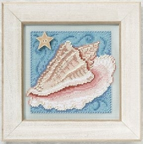 Conch Shell (2010)