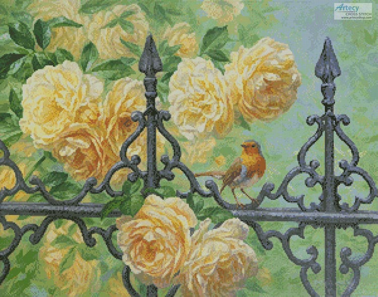 European Robin and Roses
