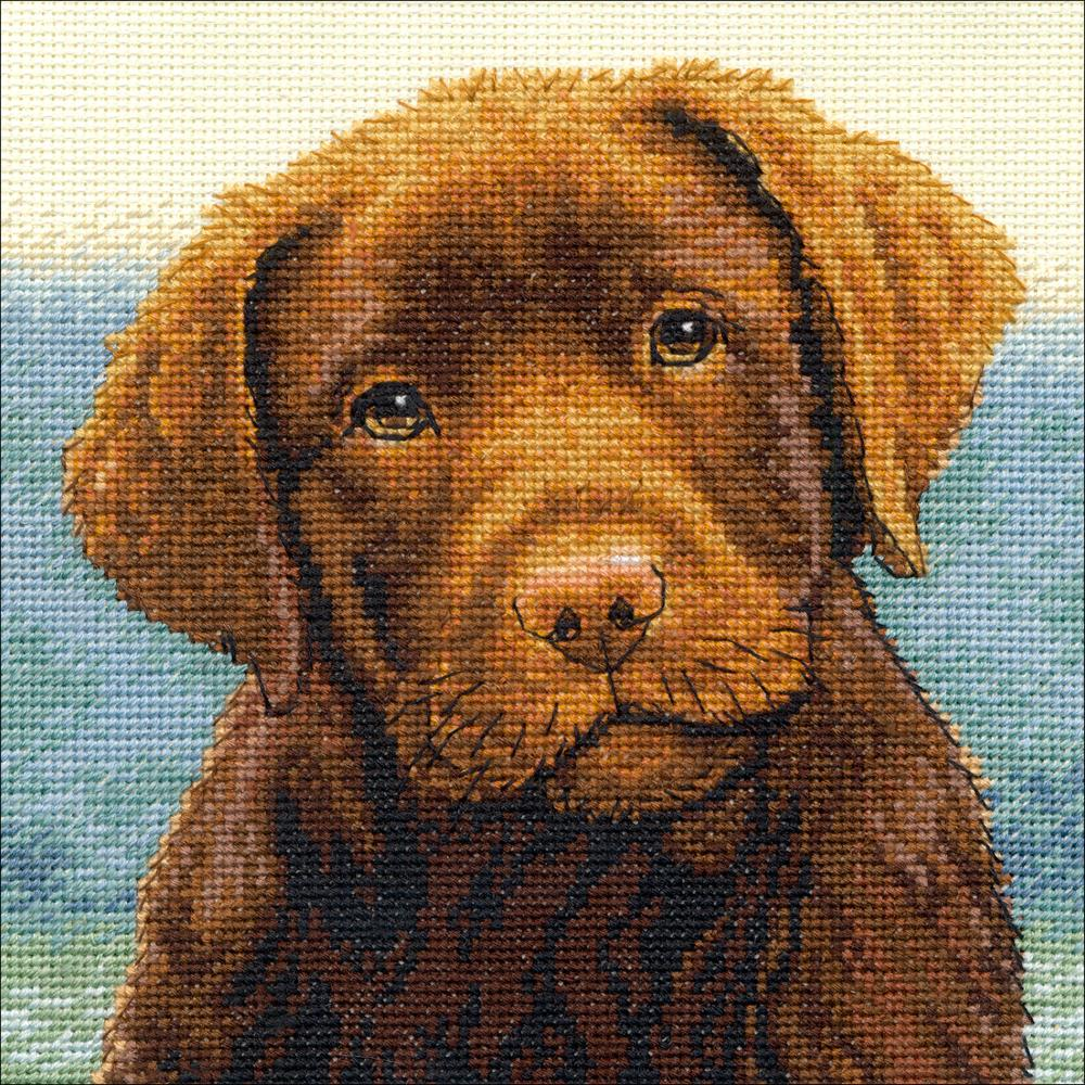 Gold Petites Hot Chocolate Counted Cross Stitch Kit