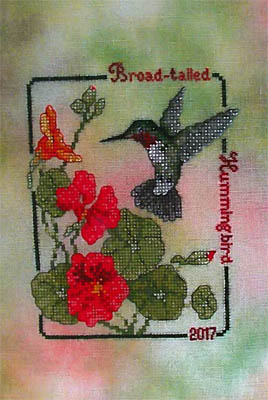 Broad Tailed Hummingbird (2017 Commemorative)