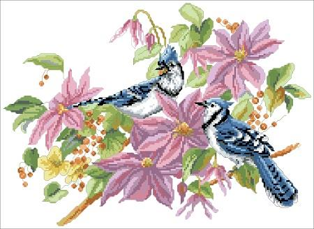 Blue Jays And Clematis