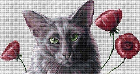 Oriental Poppies (Cat's Face)