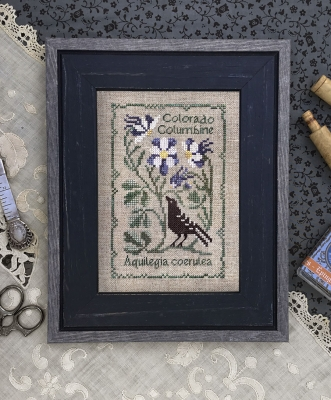 Colorado Columbine - Botanical Stitches