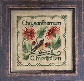 Chrysanthemum - Botanical Stitches