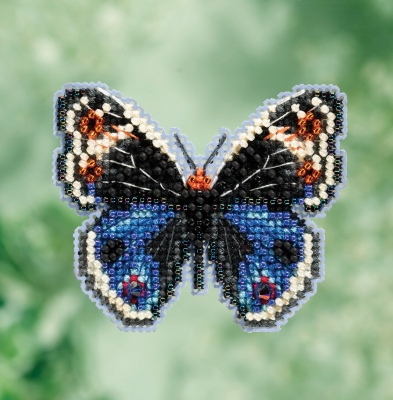 Blue Pansy Butterfly (2017)