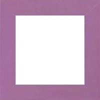 "Matte Purple Frame 10"" x 10"""