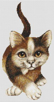 Calico Cat - Click Image to Close