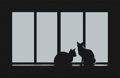 Cats in the Window